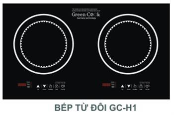 Bếp từ Green Cook GC H1